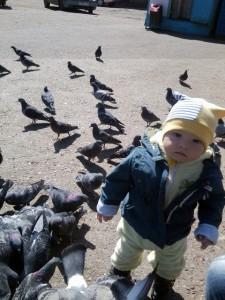 Антоша (11мес). Так здорово кормить голубей