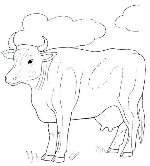 Для детей домашние животные корова