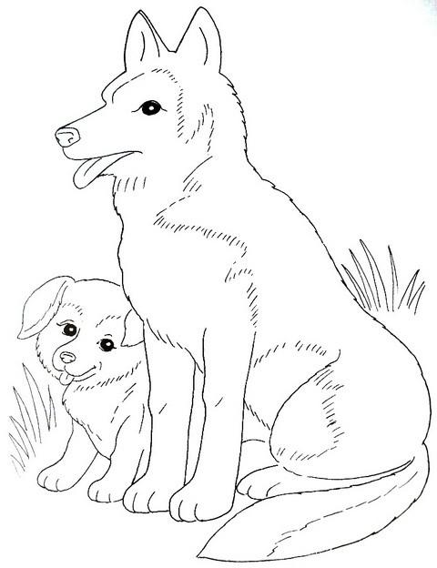 раскраска для детей домашние животные - собака