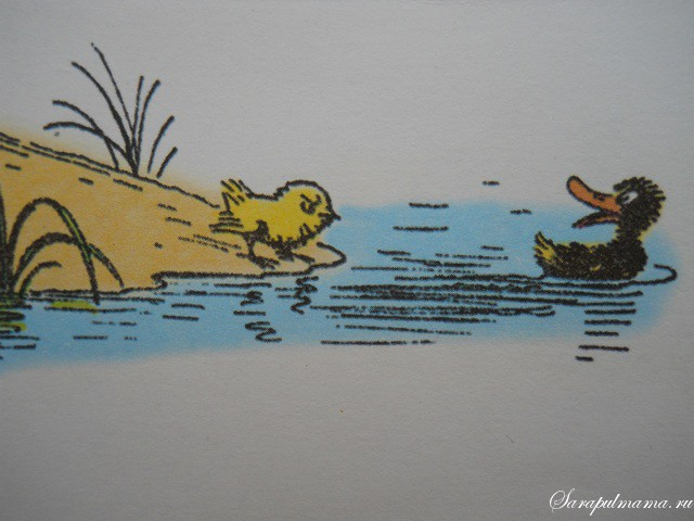 картинки сутеев про цыпленка