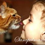 Домашние животные и развитие детей