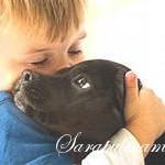 Нужна ли ребенку собака