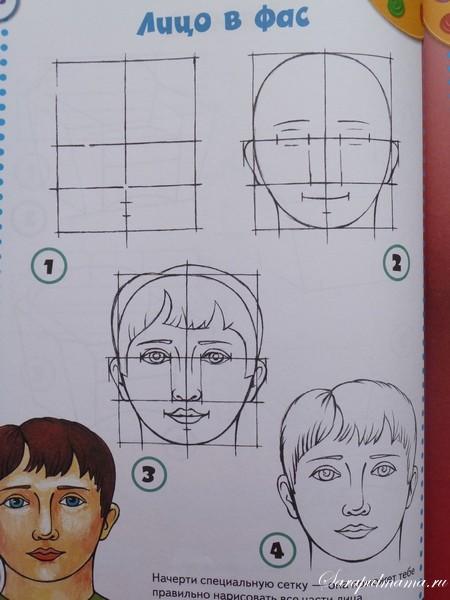 Учимся поэтапно рисовать лицо человека карандашом поэтапно