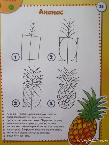 учимся рисовать поэтапно фрукты