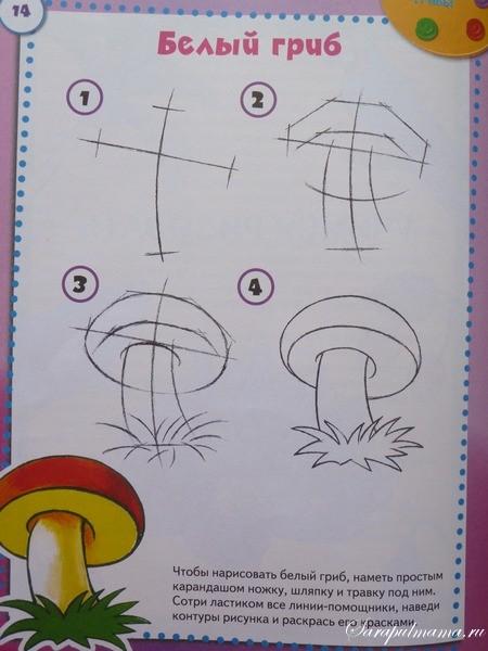Поэтапное рисование гриба 1 класс