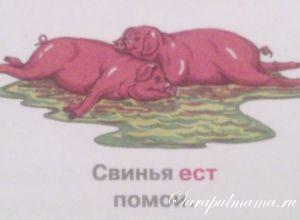 Животные. Кто как ест